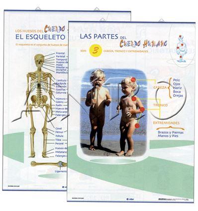LAMINA EDIGOL PRIM. ESQUELETO/PARTES CUERPO 70X100CM - 4701319
