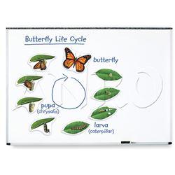 Ciclos de vida magnéticos - mariposa 9 pzas - 616043
