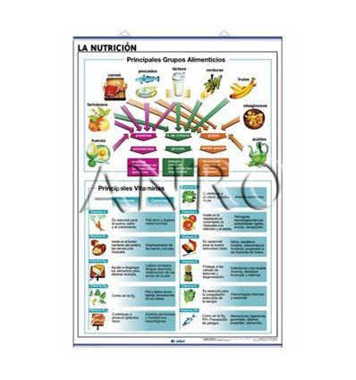 LAMINA EDIGOL SEC. NUTRICION/CUERPO HUMANO 70X100CM - 470908