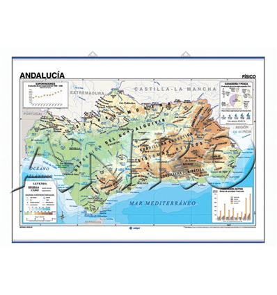 MAPA MURAL EDIGOL F/P 100X140CM ANDALUCIA - 470417